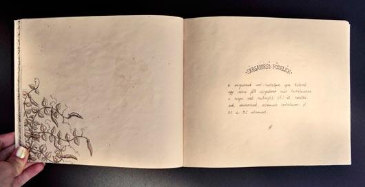 35 Beautiful Recipe Book Designs - Jayce-o-Yesta