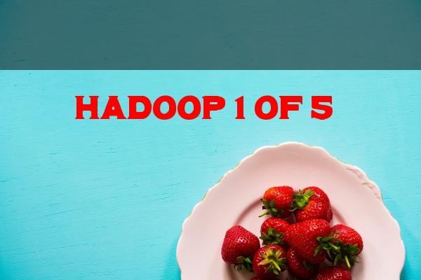 hadoop 1 0f 5