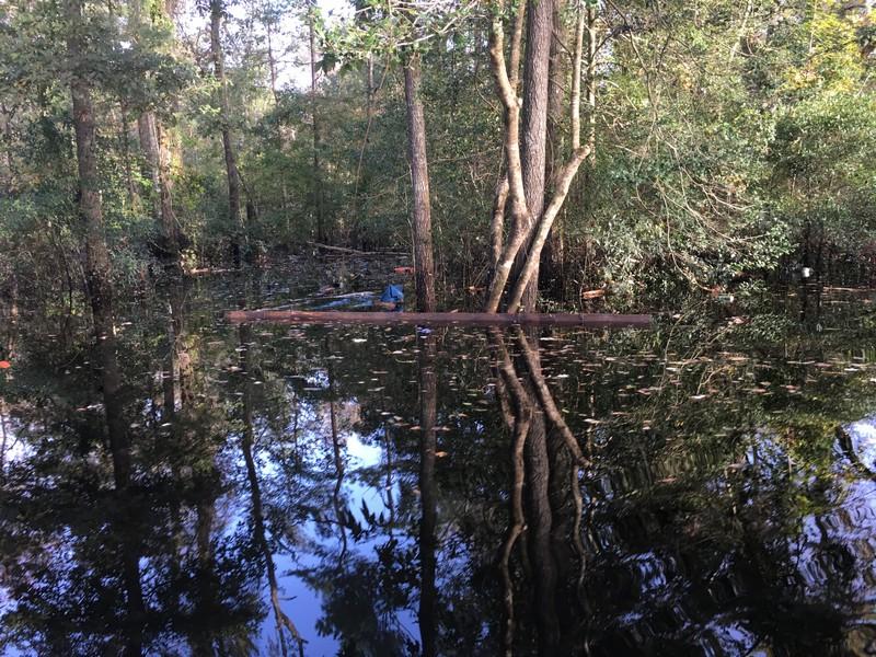 reclaimed-antique-beam--hurricane-matthew-flood-october-2016