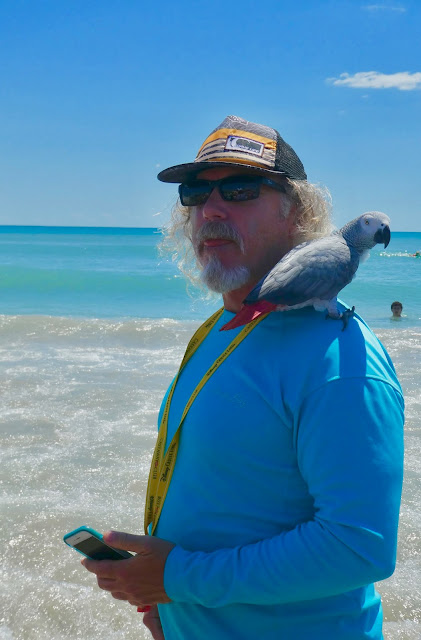 another eccentric watcher of the cocoa beach dog surfing championship