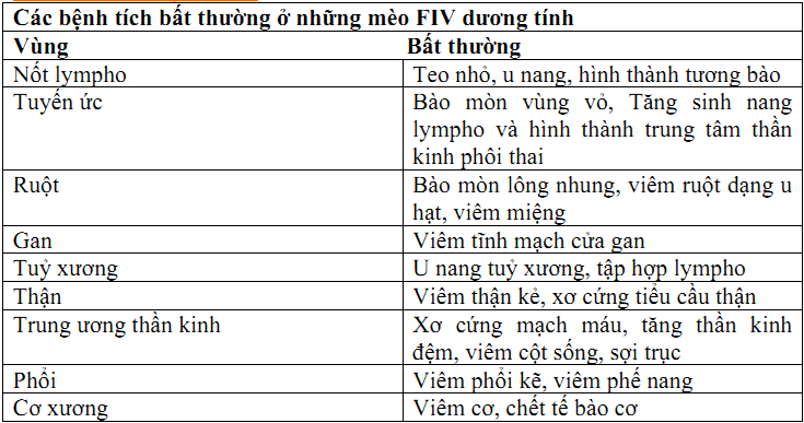Hình 2: Các bệnh lý thường gặp của FIV