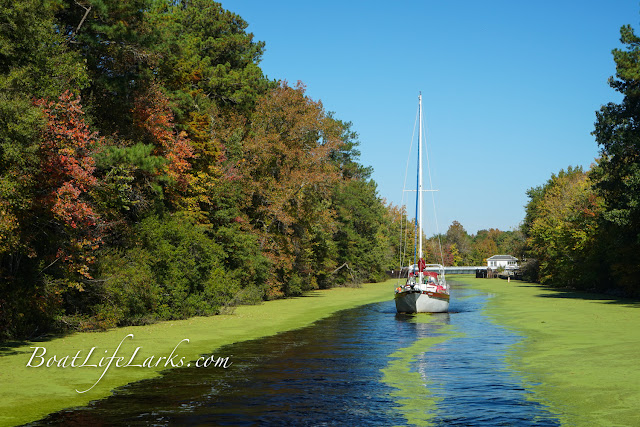 Sailboat leaves Deep Creek lock heading south on the Dismal Swamp Canal