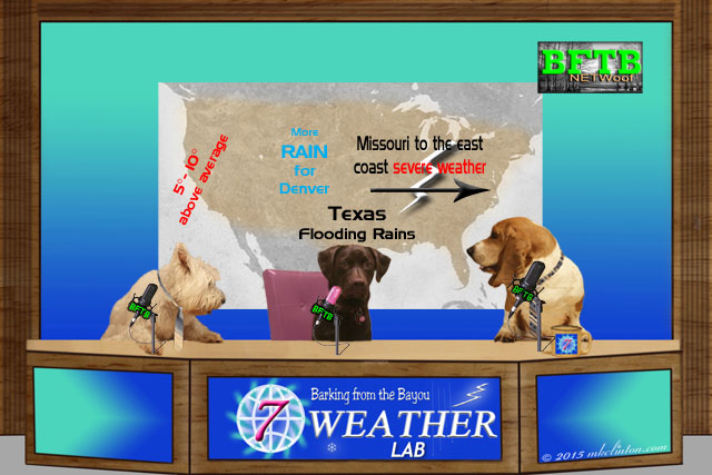 BFTB NETWoof Weather report