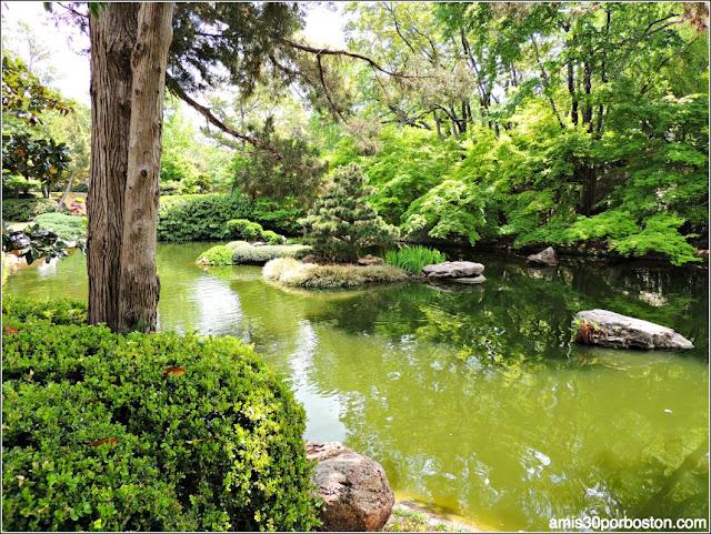 Vegetación del Jardín Japonés de Fort Worth