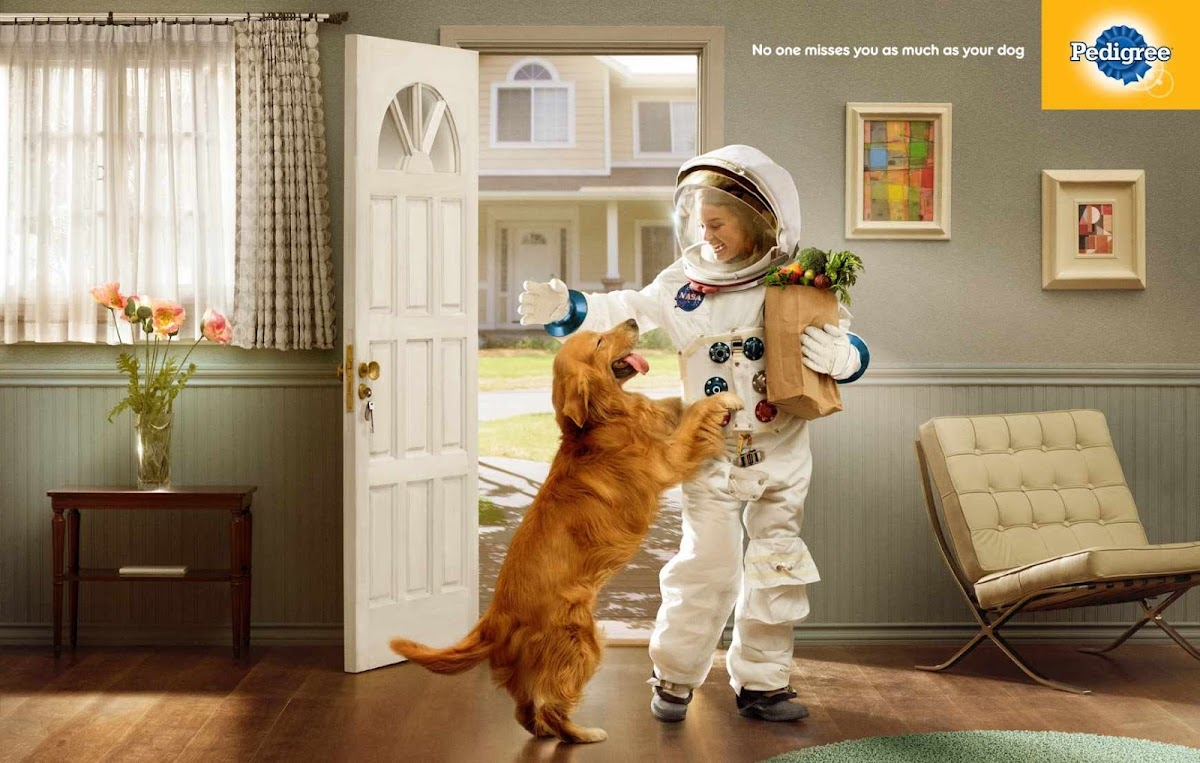 Pedigree: No one misses you as much as your dog