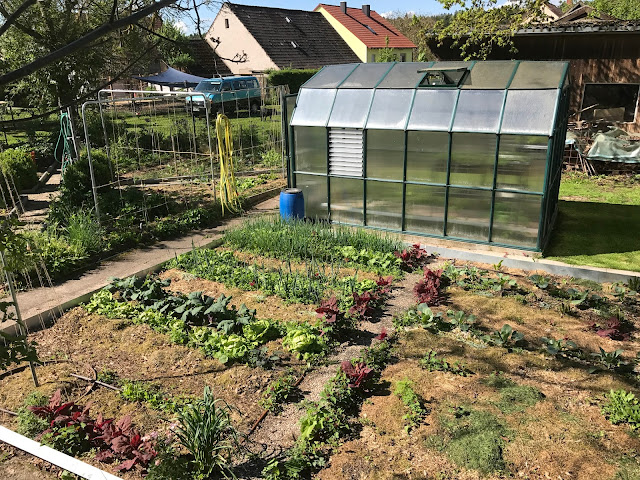 Blick in den Gemüsegarten mit Gewächshaus  (c) by Joachim Wenk