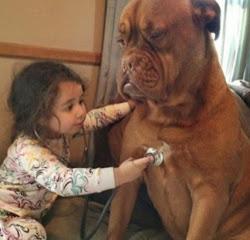 smešna slika dete pregledava psa
