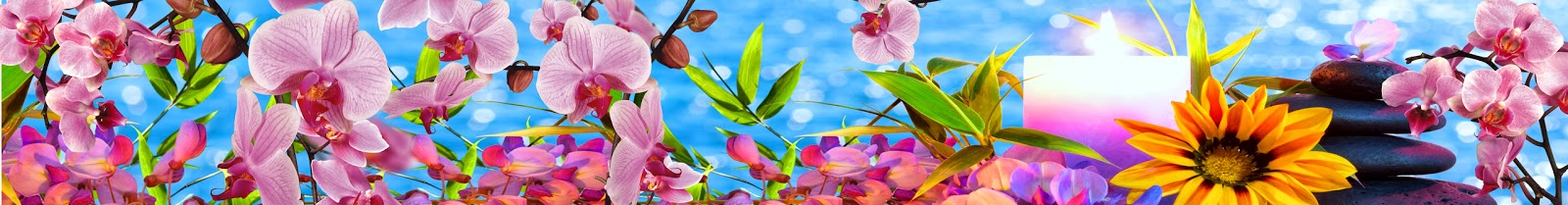 """""""GLASS"""" Обмен файлами.: Панорама SPA № 2 ( Орхидеи,камни ..."""