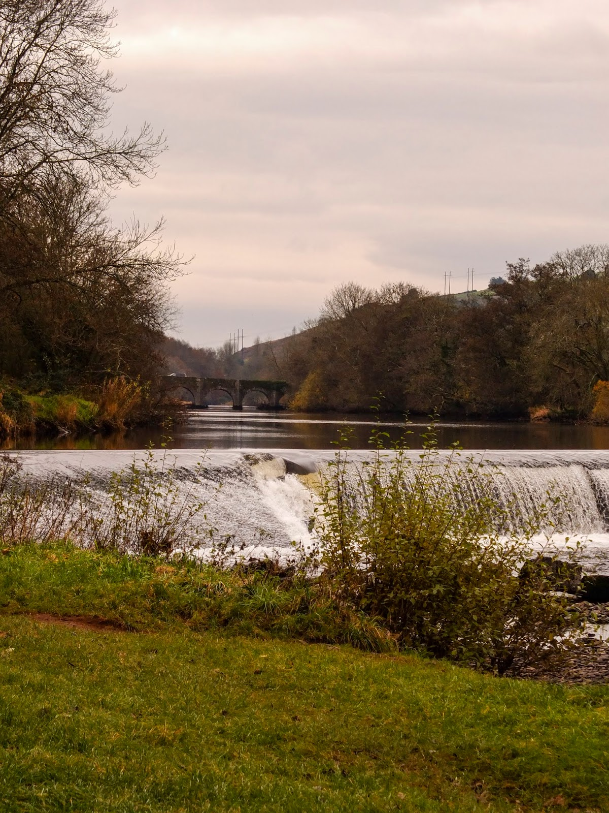 River Lee as seen from the Ballincollig Regional Park, County Cork.