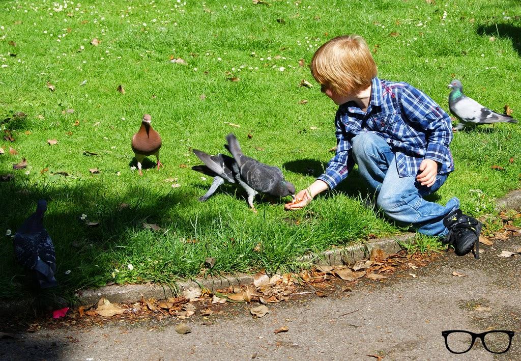 Grosvernor Park