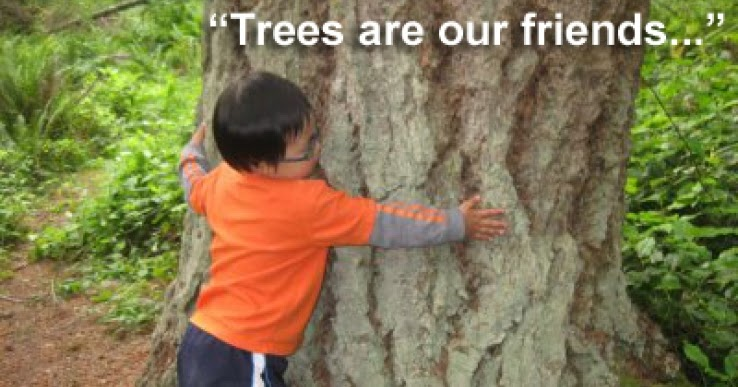 trees are our best friends english essay