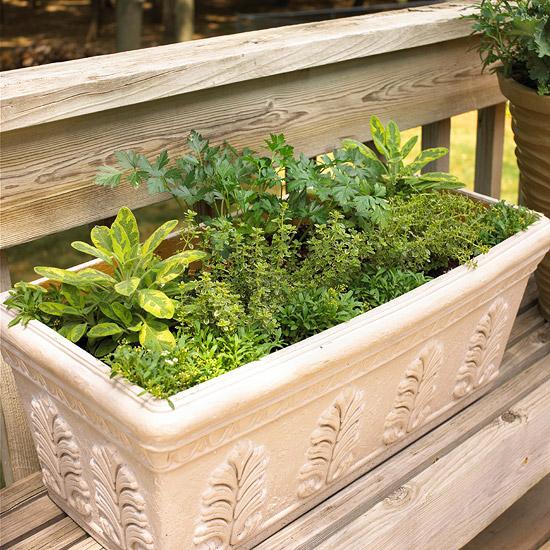 Affordable Backyard Vegetable Garden Designs Ideas 55: Cottage Garden: Fresh Ideas For Growing Vegetables In