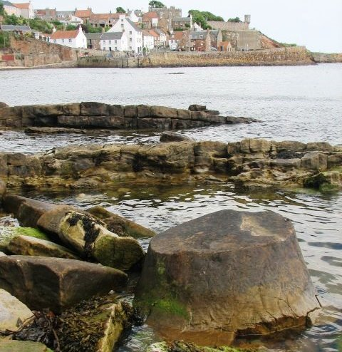 Fossil tree stump on the shoreline with Crail village in the background