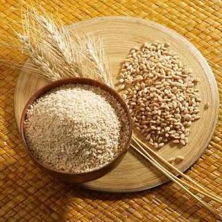 Barley Benefits (Jo Ka Daliya) k Faiday