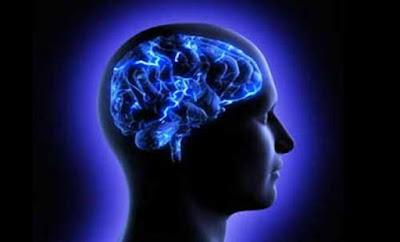 Otak Orang Gemuk Lebih Cepat Menyusut Dibanding Orang Kurus
