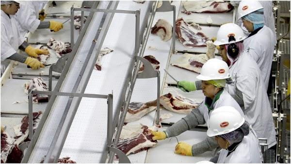 Hampir Setengah Karyawan Pabrik Pengolahan Daging Babi Positif Corona, Ada Apa?