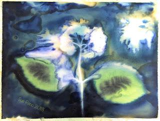 Wet cyanotype_Sue Reno_Image 421