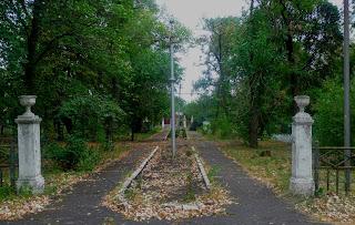 Новгородське. Парк. Алея