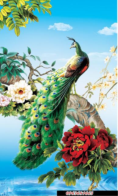 tranh kinh chim cong