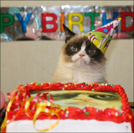 Are certainly Sad birthday cat