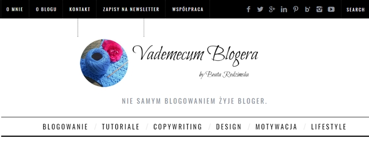 blog Vademecum Blogera