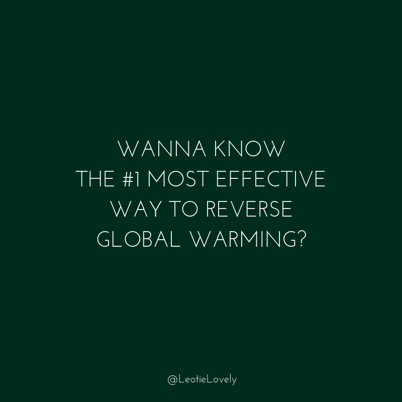 climate action, planet positive, drawdown, reverse global warming, climate breakdown, refrigerants, green living, conscious living, Leotie Lovely, conscious lifestyle, zero waste, recycle, upcycle, ethical, sustainable