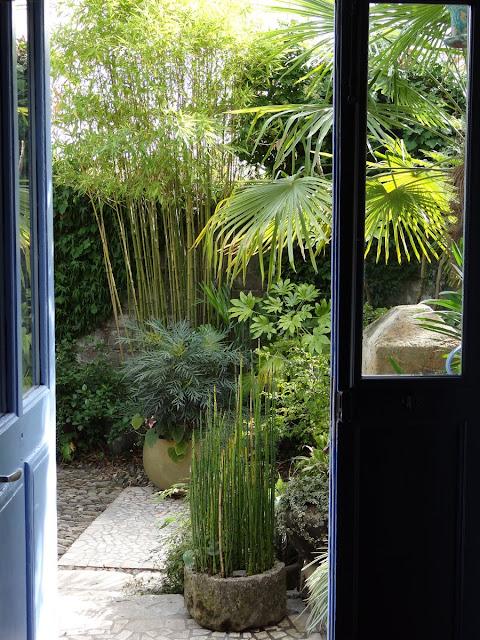 (07) Le jardin de Bésignoles - Privas - Page 4 DSC00269