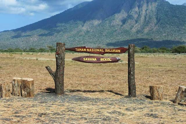 Taman Nasional Baluran di Banyuwangi Jawa Timur