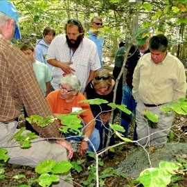 Mycological Nature Guide - Mushroom Festival Mystic CT _ New England Fall Events