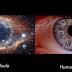 Το σύμπαν είναι μέσα μας (vid)