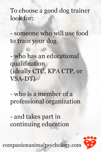The most important things to consider when hiring a dog trainer