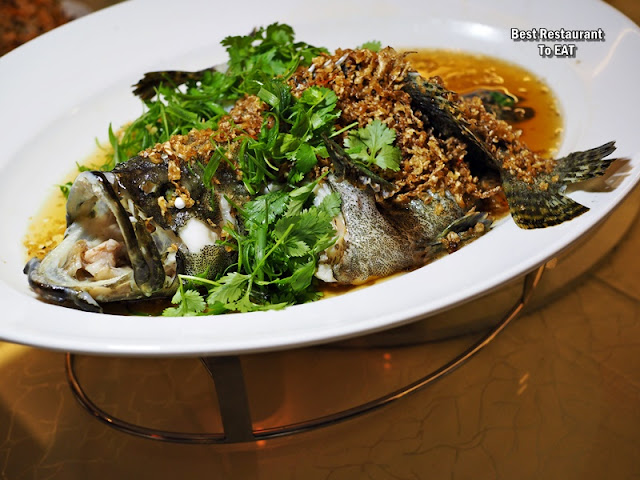 CHINESE NEW YEAR SET MENU 2020 - Steamed Pearl Tiger Grouper With Choy Po and Soy Sauce