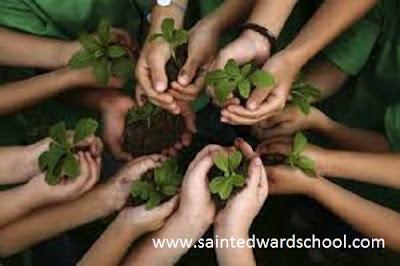 program sekolah berkebun