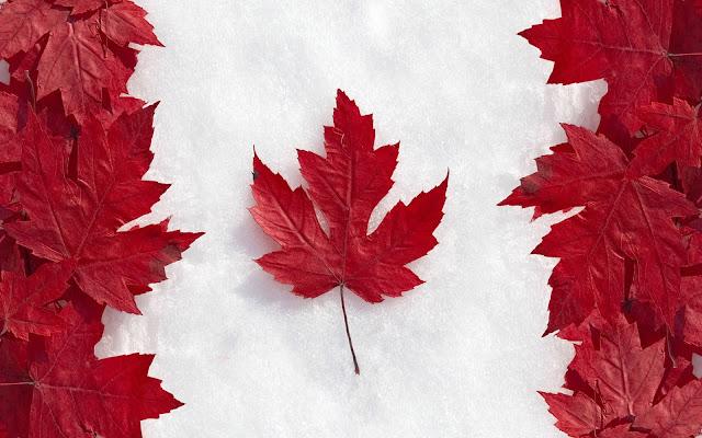 翻訳したらこうなった 翻訳したらこうなった: 「カナダの人口って日本の首都圏に負けてるらしい..