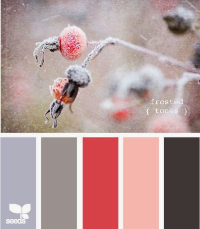 Icy berry colour inspiration image with black, red, pink, grey and white