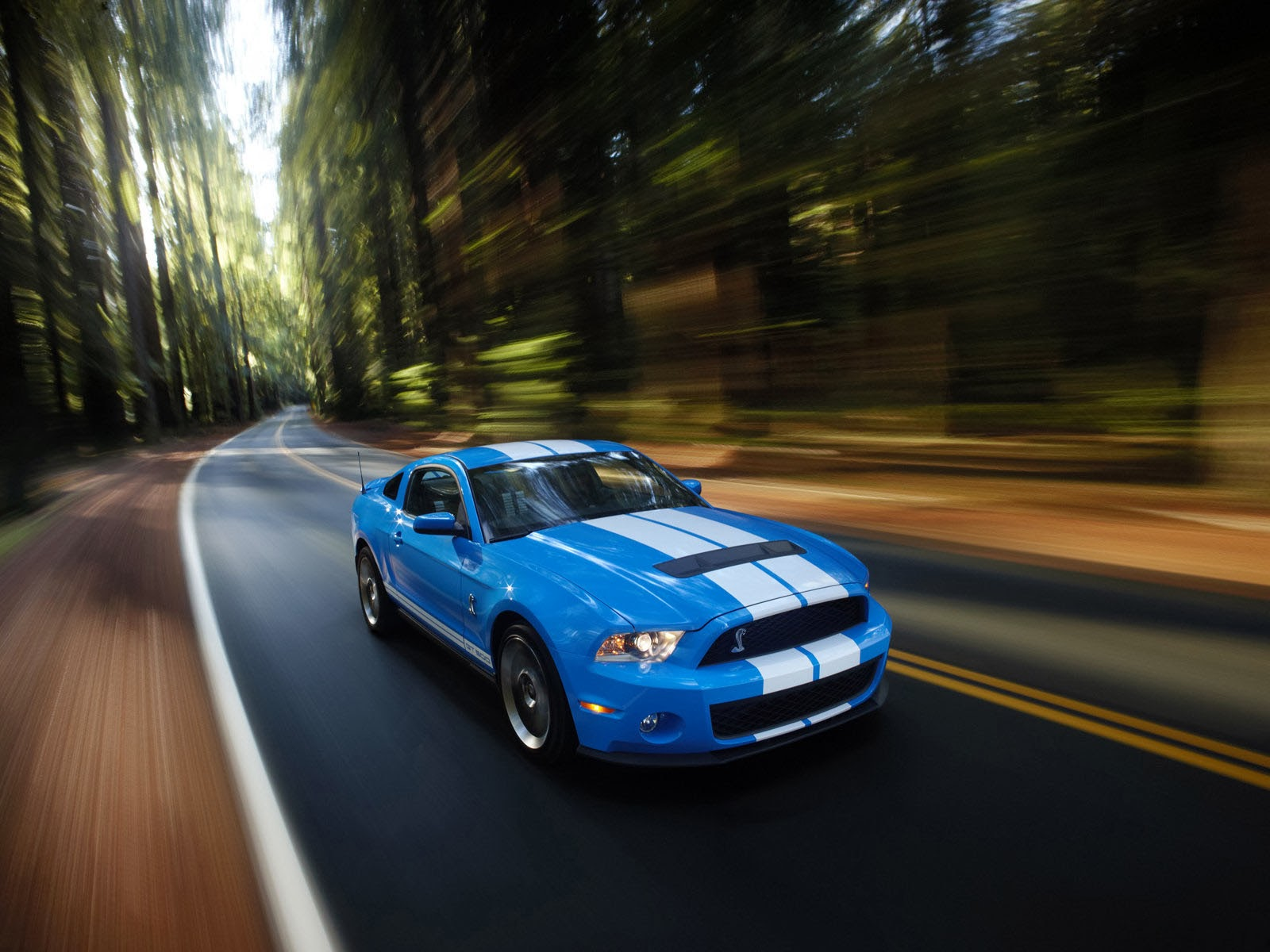 wallpapers ford mustang shelby gt500 car wallpapers. Black Bedroom Furniture Sets. Home Design Ideas