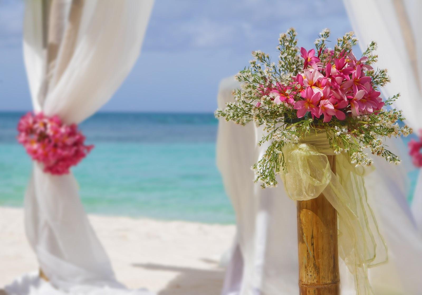 Matrimonio Spiaggia Cilento : Sposine il della sposa intervista ad alessandra