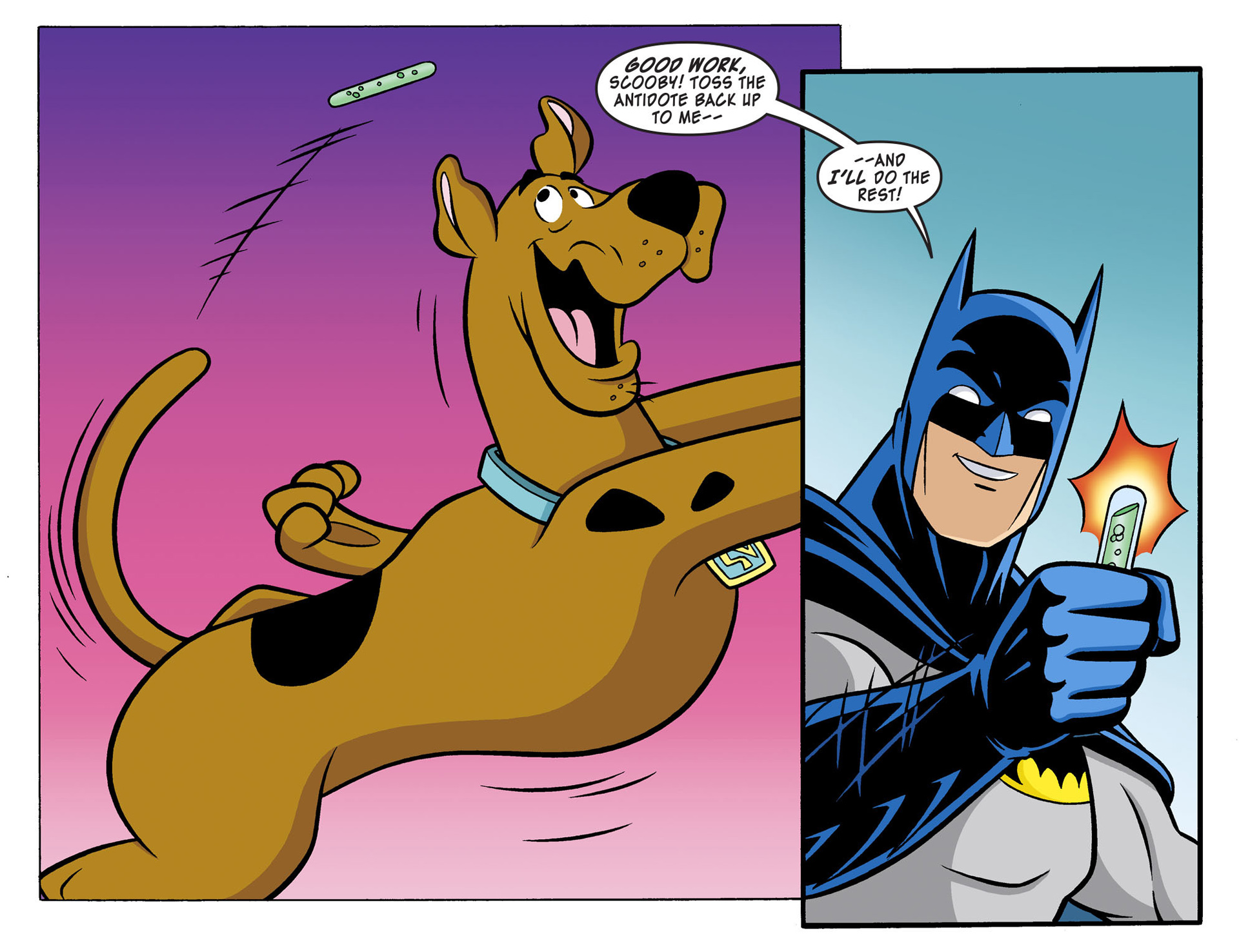 Read online Scooby-Doo! Team-Up comic -  Issue #2 - 16