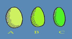 telur unggas ayam yang baik elips atau lonjong