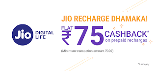 phonepe jio free recharge cashback offer