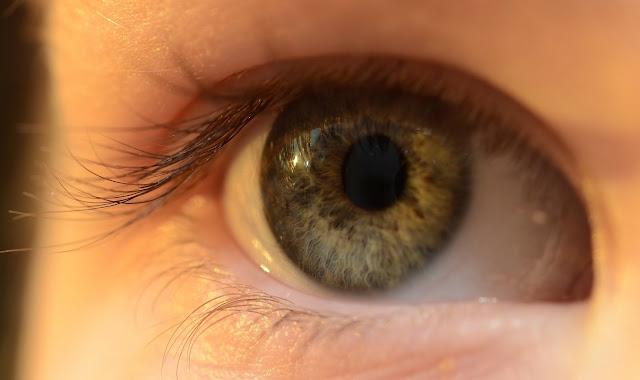 contact lens articles