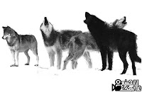 wolf brushes photoshop