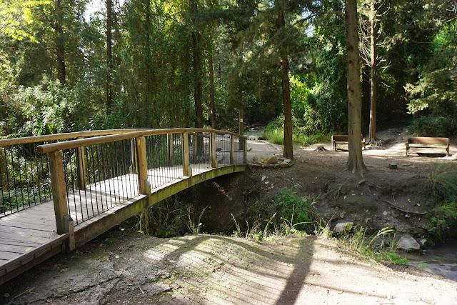 הגשר בנחל השופט