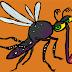Quali sono i rimedi naturali per le punture di zanzara