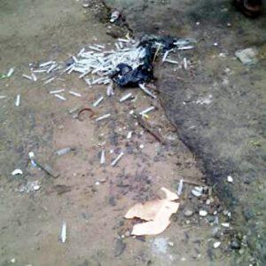 Ritualists hiding place discovered in lagos , mob lynch suspected ritualists to death