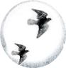 capa Resenha | Caixa de Pássaros, de Josh Malerman