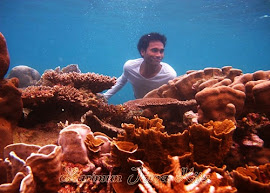 snorkeling pulau menjangan kecil karimun jawa