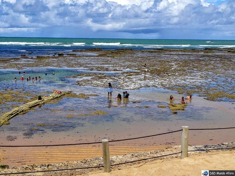 O que fazer na Praia do Forte, Bahia - curtir o mar