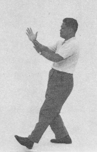 Tai Chi Chuan (Square Form) 34. Step Up, Grasping The Bird's Tail