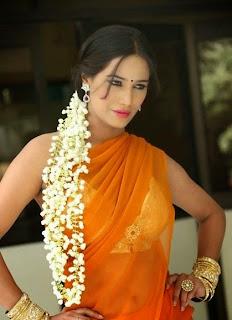 Poonam Pandey in Orange Saree and Gajra Spicy Pics